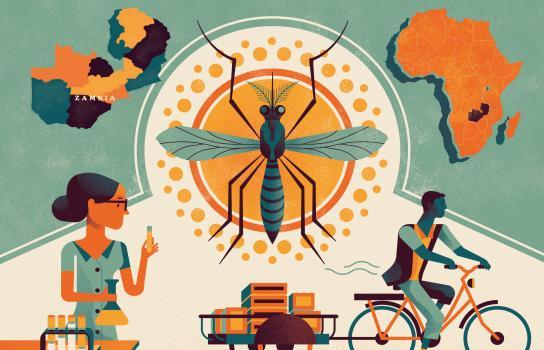 New Rotary Foundation grant supports scaling proven malaria program in Zambia